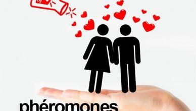 magnet-stron-pheromones