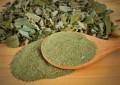 herbes-pour-perdre-du-poids