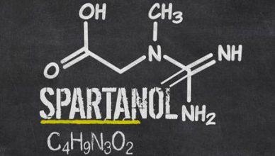 spartanol een nieuw supplement voor spiergroei